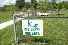 off leash